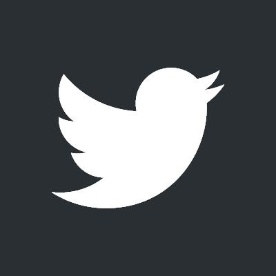 twitter bird white